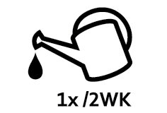 2A_Care_icon_Water