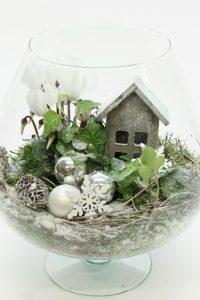 planttrend foto3