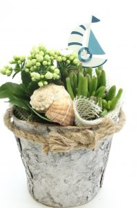 planttrend foto4